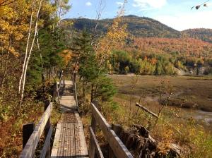 Strolling in Saguenay, Quebec